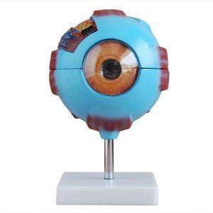 Giant Eye Model XC-316
