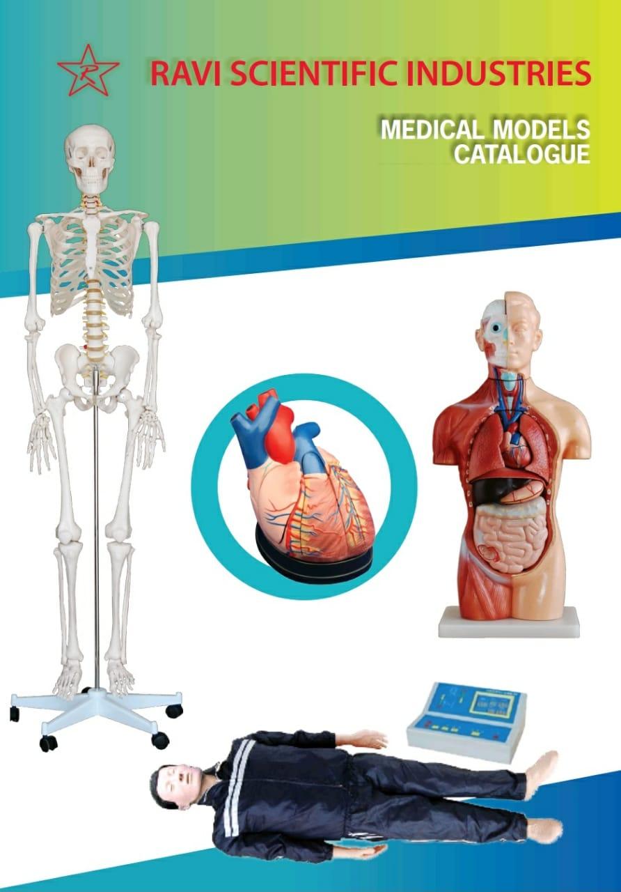 Brochures & Catalogs 1