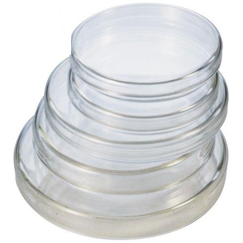 ANUMBRA Petri Dish